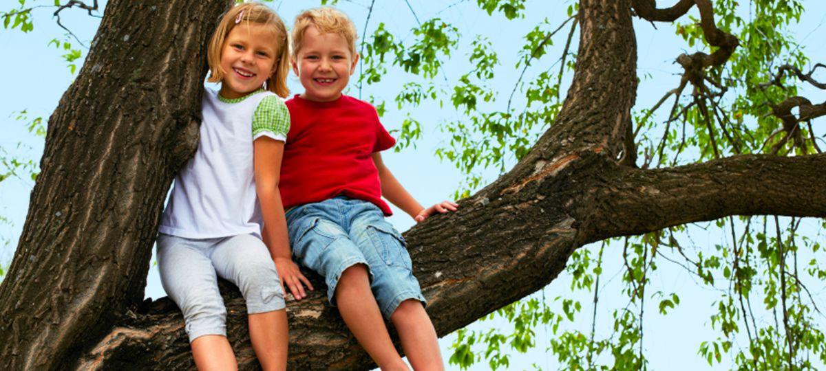 kids sitting in tree