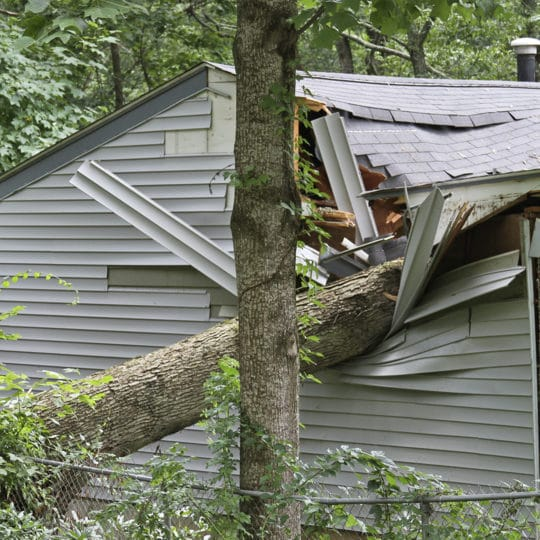 Three Best Ways to Prevent Storm Damage